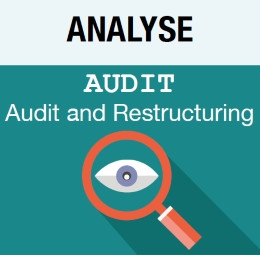 Picto Analyse - Audit - Audit and Restructuring