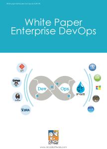 Enterprise DevOps White Paper